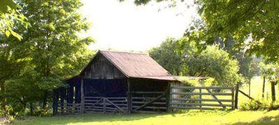 Mount Juliet Farms
