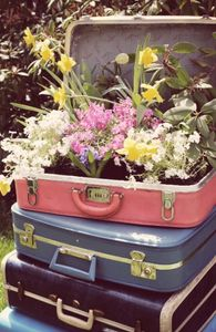 studio-34-suitcase-planter