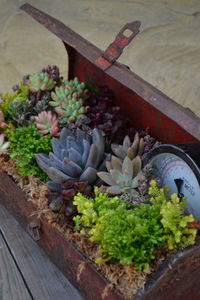 the-garden-glove-toolbox-planter