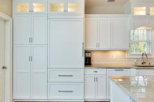 design-line-kitchens-paneled-refrigerator