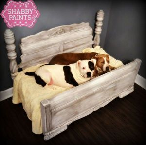 9 Pawesome Diy Dog Beds And Crates The Cameron Team