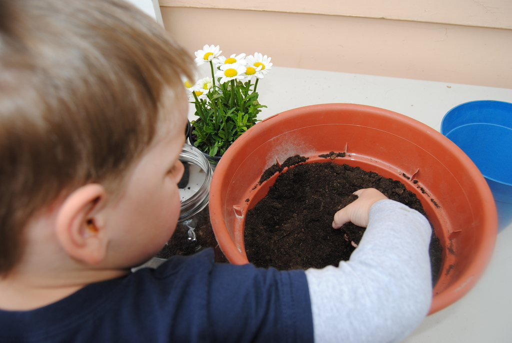 add-dirt-easy-gardening-with-kids