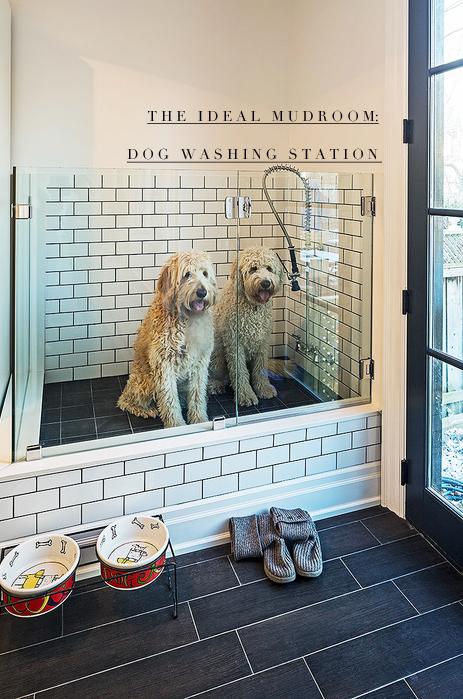live-simply-dog-washing-station
