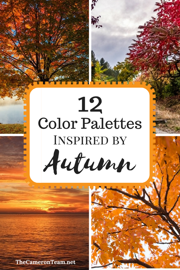 12 Color Palettes Inspired by Autumn