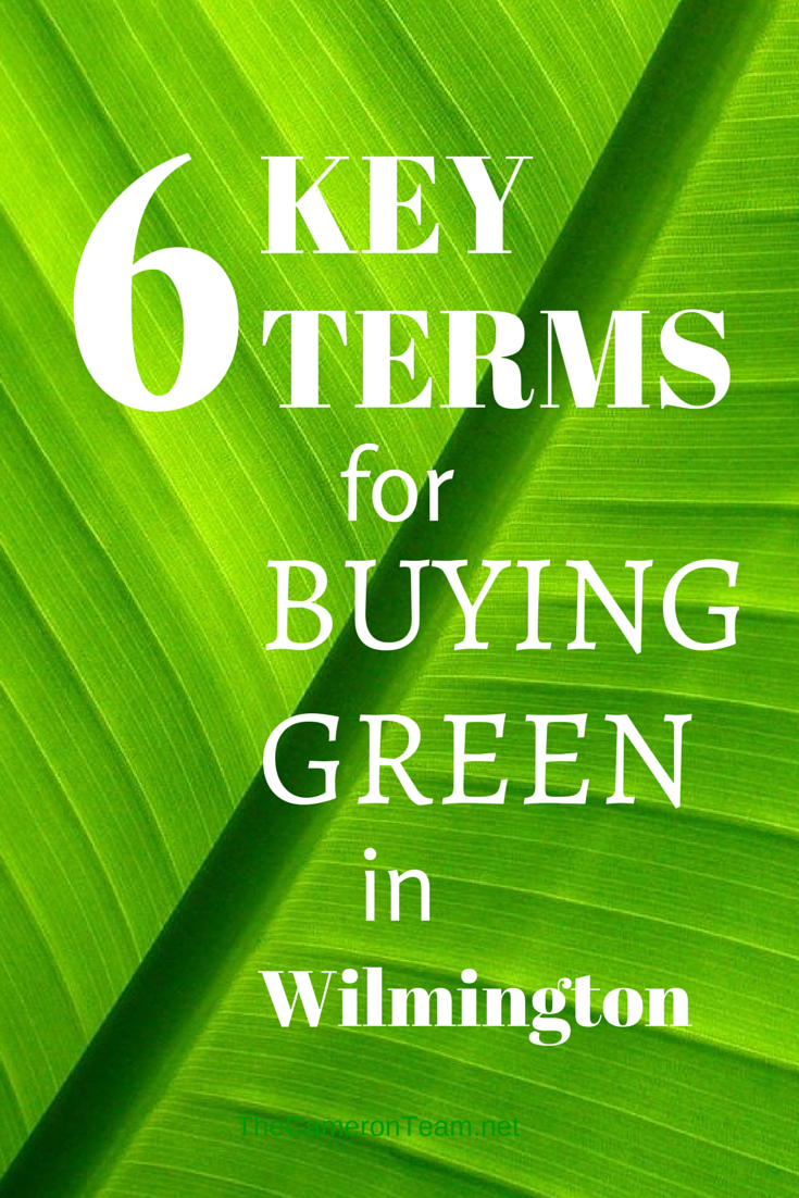 6 Terms for Buying Green in Wilmington