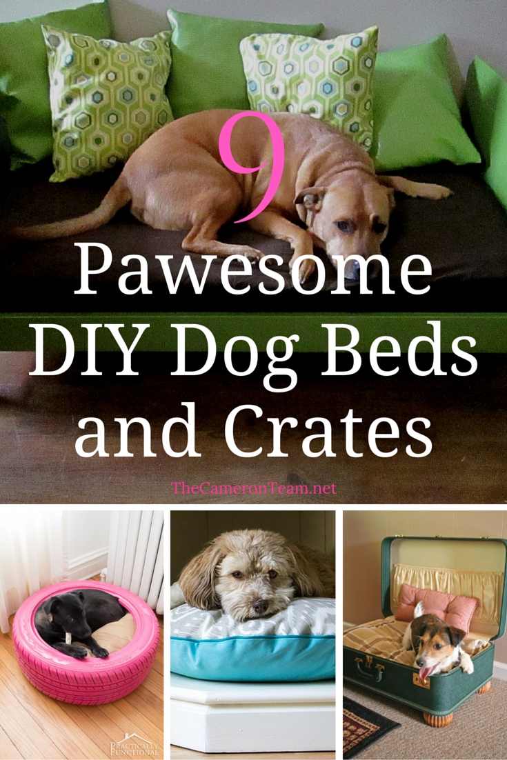 9 Pawesome DIY Dog Beds and Crates
