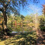 Crown Pointe Pond