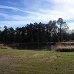 The Grove Pond