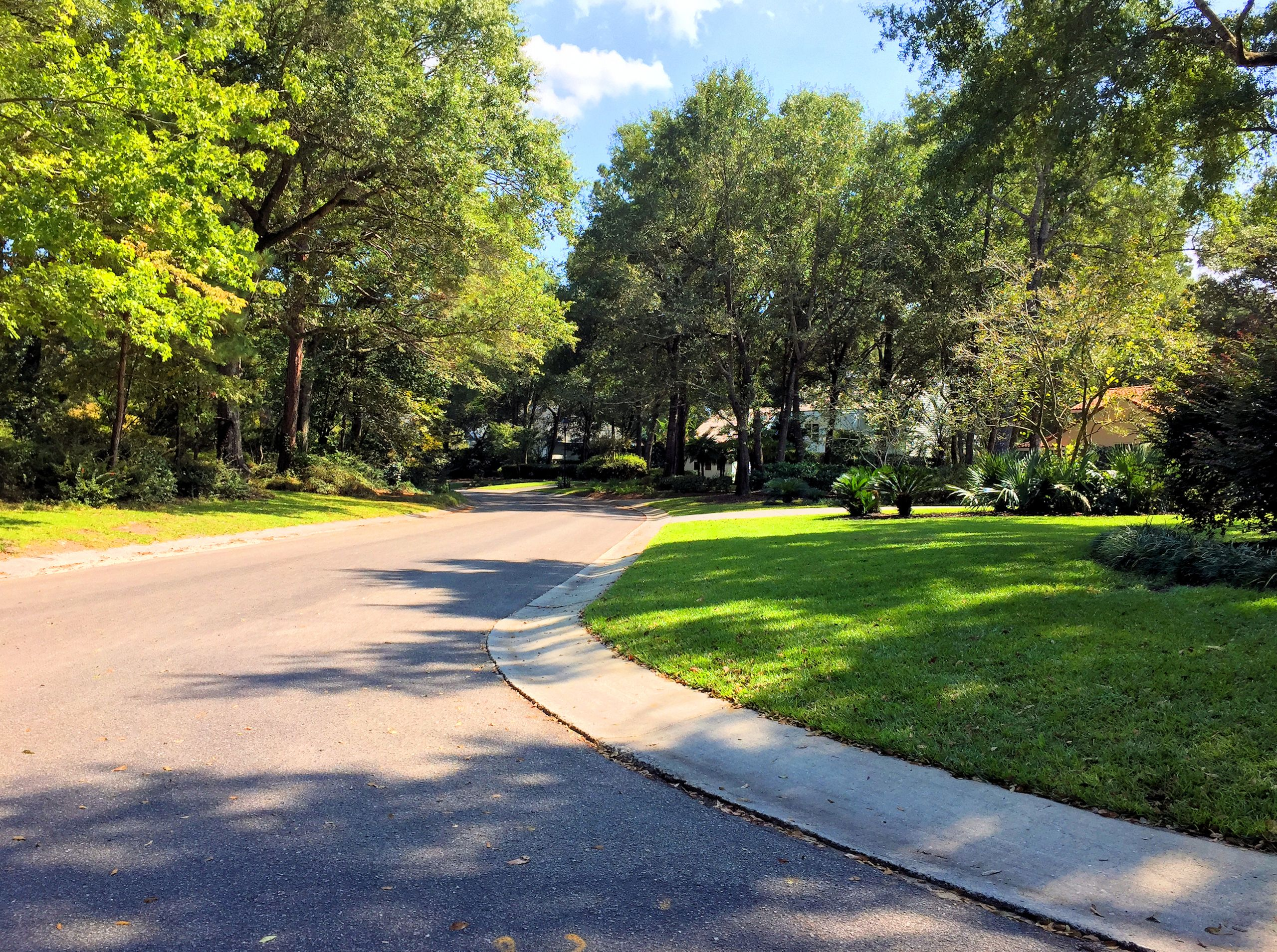 Landfall Homes for Sale in Wilmington, NC   The Cameron Team