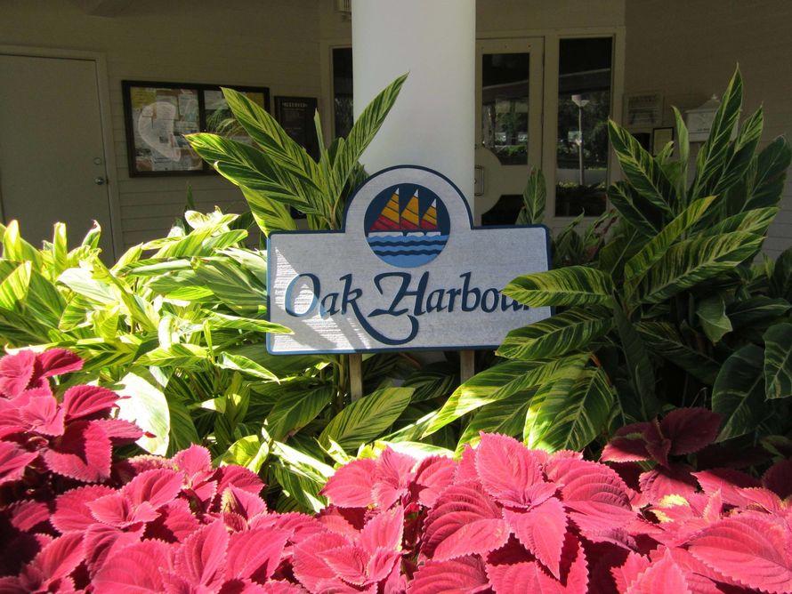 Oak-Harbour