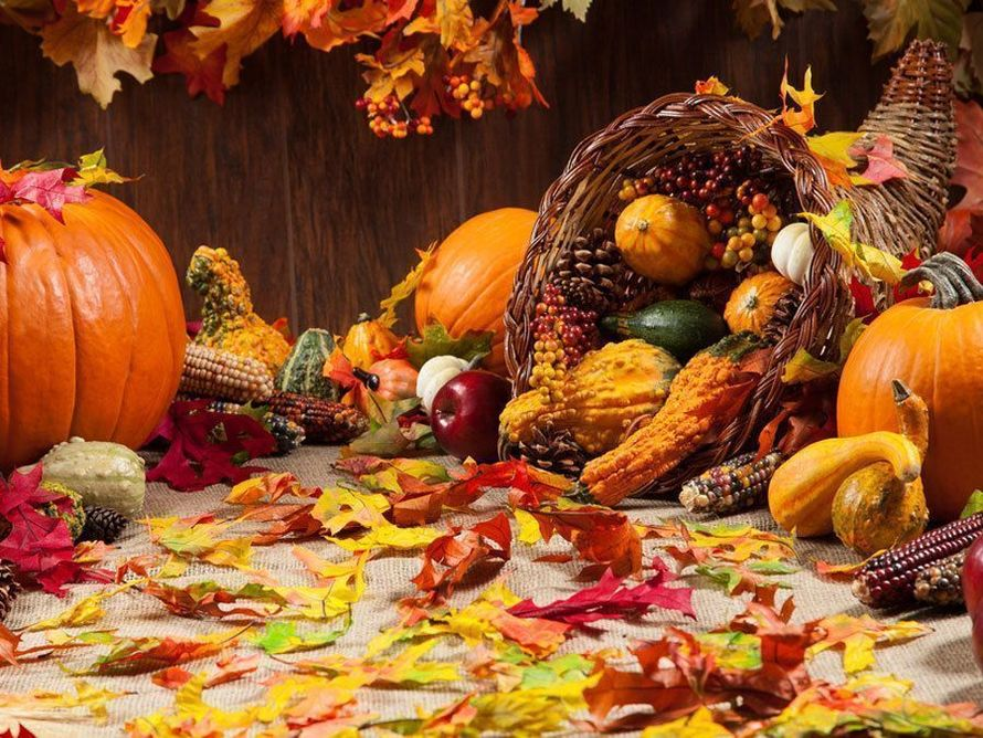 thanksgiving-pix